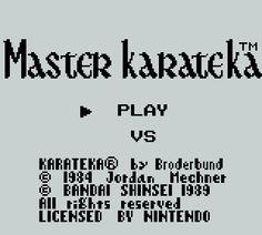 Master Karateka