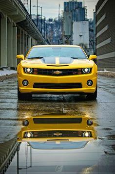 "I have always wanted a ""BumbleBee"" car.  Hmmmm......should I get one?  Ha!"