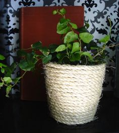 Rope-wrapped Plant Pot/Vase