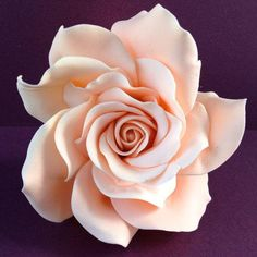 Rose gumpaste...probably the prettiest gumpaste rose I have ever seen. I don't really enjoy making them because I never get them looking the way I want-like this!!!! I hope I get them like this one day!!!