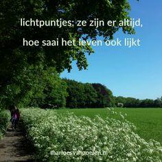 #Lichtpuntje van de week #26 | Een stiltewandeling maken in een prachtig natuurgebied | Wat was jouw #lichtpuntje van de week? | Voor meer #lichtpuntjes zie http://www.marloesvanzoelen.nl