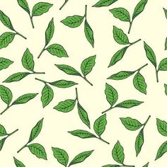 Seamless pattern with green tea leaves on pastel beige background. Green Tea Plant, Herbal Green Tea, Tee Illustration, Plant Illustration, Leaf Background, Beige Background, Tea Design, Leaf Drawing, Photo Images