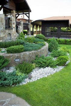 Xeriscaping in a slopy front yard