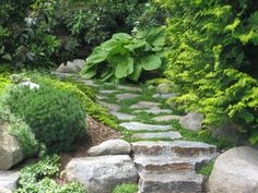 Backyard Plan, Backyard Landscaping, Garden Steps, Garden Paths, Outdoor Walkway, Patio, Outdoor Decor, Stepping Stone Walkways, Rock Pathway