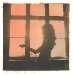 #window #light ellen rogers