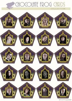 I wish these chocolate frog cards were real, but these don't even show the 4 founders. Those are the only cards at the theme park. :(