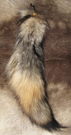 Real Wolf tail keychain, $100
