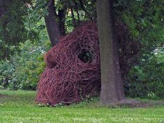 » SCULPTURE Sculptures, Nature, Plants, Naturaleza, Plant, Nature Illustration, Off Grid, Planets, Sculpture