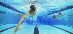 """MIDWOUD – Ook dit jaar is Zwemvereniging Hoorn weer te vinden in de gemeente Medemblik. Net als vorig jaar wil Zwemvereniging Hoorn samen met """"Het Zwembad"""" te Midwoud, de zwem-en waterpolosport een..."""