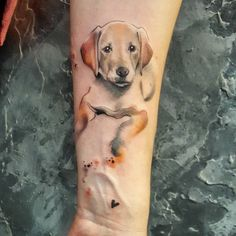 Simona Blanar watercolor dog tattoo Source by essmiralldahann Trendy Tattoos, Cute Tattoos, Beautiful Tattoos, Body Art Tattoos, Print Tattoos, Small Tattoos, Tatoos, Watercolor Lion Tattoo, Watercolor Sketch