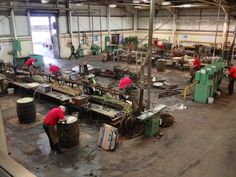 coopers in action at Speyside Cooperage