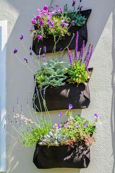 Jenn's Garden Apothecary
