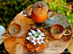 DELIGHTFUL fairy acorn teapot and teacups - More enchanting photos of this magical FAIRY GARDEN on The Magic Onions Blog and FairyGardens.com