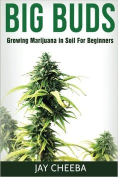 Growing Marijuana: Big Buds, Growing Marijuana In Soil For Beginners (Growing Marijuana, Marijuana Cultivation, Marijuana Growing, Medical Marijuana, Marijuana Horticulture): Jay Cheeba: 9781534980792: Amazon.com: Books