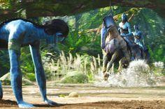 We all stumble in the beginning. Avatar Theme, Avatar Movie, Pandora Jewelry Box, Pandora Bracelets, Stephen Lang, James Cameron, Action Film, Sully, Good Movies