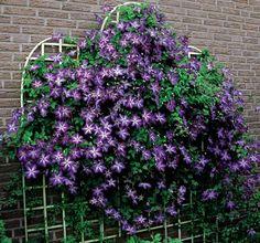Balkon Künstliche Blume Dekor Haus Violett Pflanze Ganz Neu Heißer Verkauf