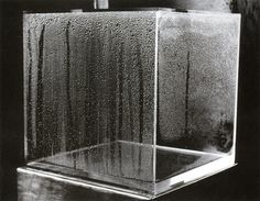 """Hans Haacke - """"Condensation Cube""""  object is impacted by the people watching it; interested in object reacting to their environments – evolved into survey work;   transparent cube made of plexiglass – responding to its environment --> the humidity in the air would create the condensation in the cube (more people more condensation); it lives only when there are people around it"""
