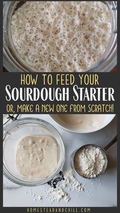 Sourdough starter is alive, and needs to be fed and cared for to survive! Read along to learn how to maintain, store, and feed a sourdough stater. If you don't have one yet, learn how to easily make a sourdough starter from scratch! Sourdough Bread Starter, Sourdough Starter Recipe With Potato Flakes, Sour Dough Bread Starter Recipe, Rustic Sourdough Bread Recipe, Sourdough Bread Machine, Amish Bread Recipes, Ciabatta Bread Recipe, Sourdough Cinnamon Rolls, Sourdough Biscuits