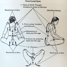 #Repost @iyengar.yoga.australia ・・・ 3 crucial spots in sitting for pranayama, from Light on Pranayama by B.K.S. Iyengar.⠀ .⠀ .⠀ .⠀ via…