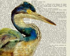 "vintage heron watercolor digitally printed onto old book page via Etsy seller ""FauxKiss"""