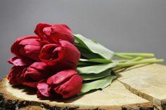Bosje rode Tulp (6 tulpen)