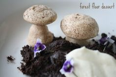 3 forest floor dessert mushroom chocolate cooker and a looker