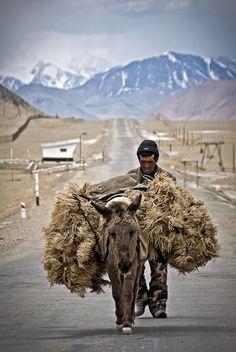 Dry bush seller near Karakul Lake in Tajikistan. © Guillem Lopez #JetsetterCurator #SilkRoad