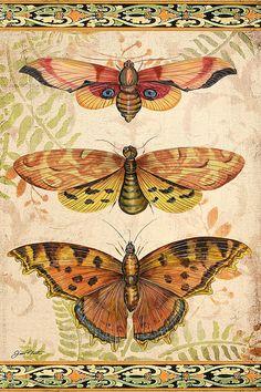 I uploaded new artwork to fineartamerica.com! - 'Vintage Wings-lovely Trio' - http://fineartamerica.com/featured/vintage-wings-lovely-trio-jean-plout.html via @fineartamerica