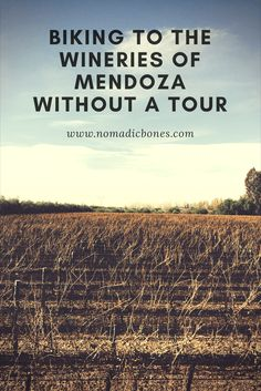 Biking to the Wineries of Mendoza Without a Tour