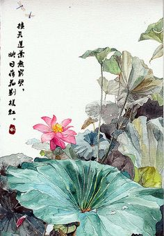 celiabasto:  100% ART Japanese Painting, Chinese Painting, Art Floral, Watercolor Lotus, Art Chinois, Lily Painting, Art Asiatique, Art Japonais, Art Et Illustration