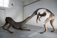 Charles Avery, title unknown - Avery has devoted 10 years of his work - including sculpture, painting, and writings - to recreating a fictional island, like this bizarre conjoined beast. Art Actuel, Instalation Art, Living In London, Bizarre, Contemporary Sculpture, Contemporary Artists, Mythological Creatures, Mythical Creatures, Creature Design