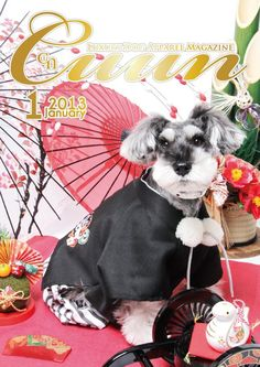 Cuun -Luxury Dog Apparel Magazine- 2013