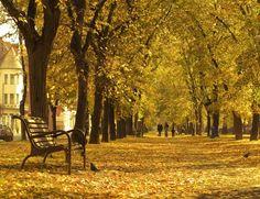 Košice - Park 2