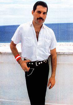 Mercury Killer Queen = OMG this is gorgeous!Killer Queen = OMG this is gorgeous! Mercury Killer Queen = OMG this is gorgeous!Killer Queen = OMG this is gorgeous! Queen Freddie Mercury, Freddie Mercury Quotes, Mercury Facts, Freedy Mercury, Queen Photos, Queen Pictures, John Deacon, Freddie Mercury Zitate, Freddie Mercuri