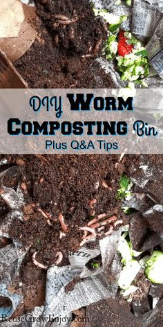 to start your own worm composting bin and wanting to know all the ins and outs? I will show you step by step our to make a worm composting bin as well as share some great tips to help you care for them.