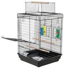 cockatiel cage requirements