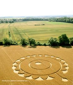 Crop Circle in Gloucestershire, United Kingdom,  Reported 15th July 2014 - photo by Lucy Pringle