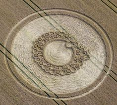 Crop Circle at Roundway Hill, Wiltshire, England - photo from Psychedelic Adventure; Crop Circles, Aliens And Ufos, Ancient Aliens, Circle Art, Circle Design, Nazca Lines, Alien Art, Ancient Mysteries, White Horses