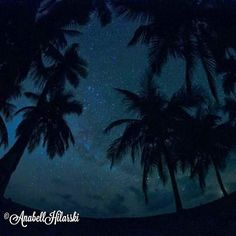 Una noche llena de estrella Feliz Noche @VIPPanamaTours  http://ift.tt/1CFxaEy #panama #travel #turismo