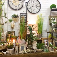 New display, greenery and naturals with silver splashes! Shop display at Lavish Abode June 2015