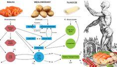 Najzdrowsze węglowodany, które odżywią twoje ciało – Motywator Dietetyczny