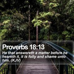 Proverbs 18:13   He that answereth a matter before he heareth it, it is folly and shame unto him. (KJV)   #Prince #Adventure #LifeQuotes #PhotoOfTheDay   http://www.bible-sms.com/
