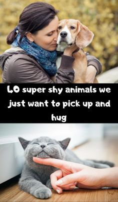 40 super shy animals we just want to pick up and hug Simple Outfits, Fall Outfits, Dress Suits For Men, Most Beautiful Dogs, Pretty Blue Eyes, Intresting Facts, Camera Shy, Classic Collection, Art Crafts