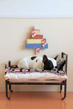 seriously the cutest #dogbed i have ever seen my #frenchies need this!  Limited Edition French Bulldog Tee