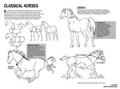 How to Draw Horses Website (MTH 10-12-15)