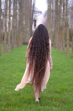 Bun Hairstyles For Long Hair, Braids For Long Hair, Pretty Hairstyles, Braided Hairstyles, Medium Long Hair, Long Brown Hair, Super Long Hair, Adele Hair, Wild Hair