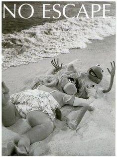 miss piggy and kermit Miss Piggy Muppets, Les Muppets, Kermit And Miss Piggy, Kermit The Frog, Kermit Face, Jim Henson, Caco E Miss Piggy, Fraggle Rock, The Muppet Show