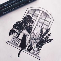 cactus and cat