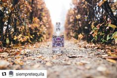It was our pleasure! #Repost @siempretequila with @repostapp  Truly an honour to be a part of the @tequilaaficionado heartland tour.   #taheartland #Sponsored