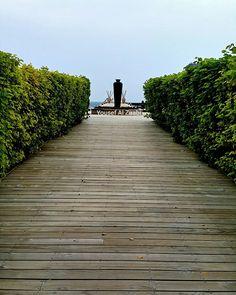 Railroad Tracks, Sidewalk, Travel, Viajes, Side Walkway, Walkway, Destinations, Traveling, Trips